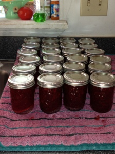 24 Jars of YUMMY Strawberry Preserves
